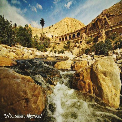 Biskra - Algérie Rock - Object River Sky Connection Day Tree Water Bridge - Man Made Structure Nature Tranquil Scene Beauty In Nature Cloud - Sky Scenics Outdoors No People Built Structure Architecture Tranquility Landscape Mountain Biskra Biskra. Algeria. Biskra.Algeria. Algeria Photography Algeria