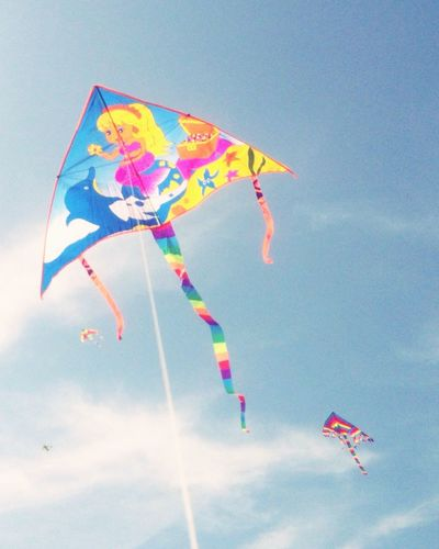 Kite Colors Color Of Life Emjoy Life