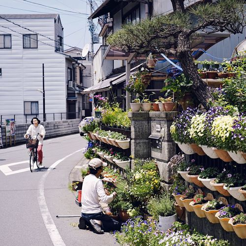 A tranquil scene in a quiet district of Kyoto... City Plant Flower Real People Bicycle Square Format Lovers Building Exterior Street Photography Kyoto Japan 50mm Outdoors City Life My Point Of View Hello World