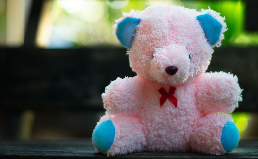 Teddy Bear. Doll Animal Animal Representation Animal Themes Art And Craft Close-up Day Focus On Foreground Front View Indoors  Mammal No People Pink Color Representation Single Object Softness Stuffed Toy Teddy Bear Toy Toy Animal