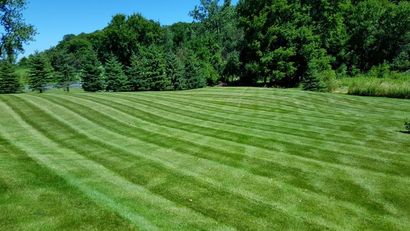 Lawn Mowing Me At Work Samsunggalaxys6edge Minnesota Enjoying Life Best Of The Best Lawn Art I Love My Job! View From My Office Taking Photos