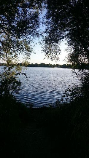 Evening Walk Evening Sky Water NatureReserve