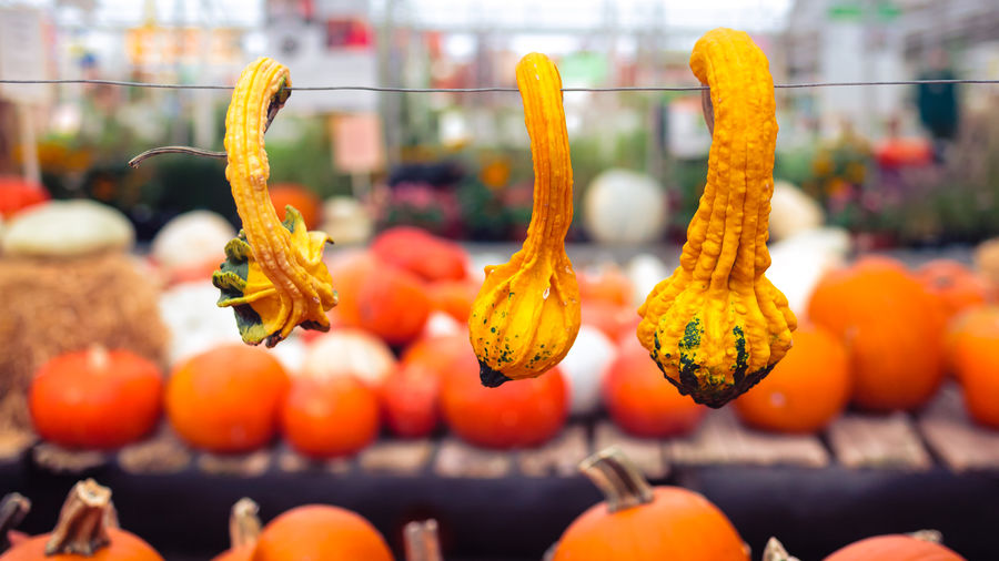 Close-Up Of Squashes At Market