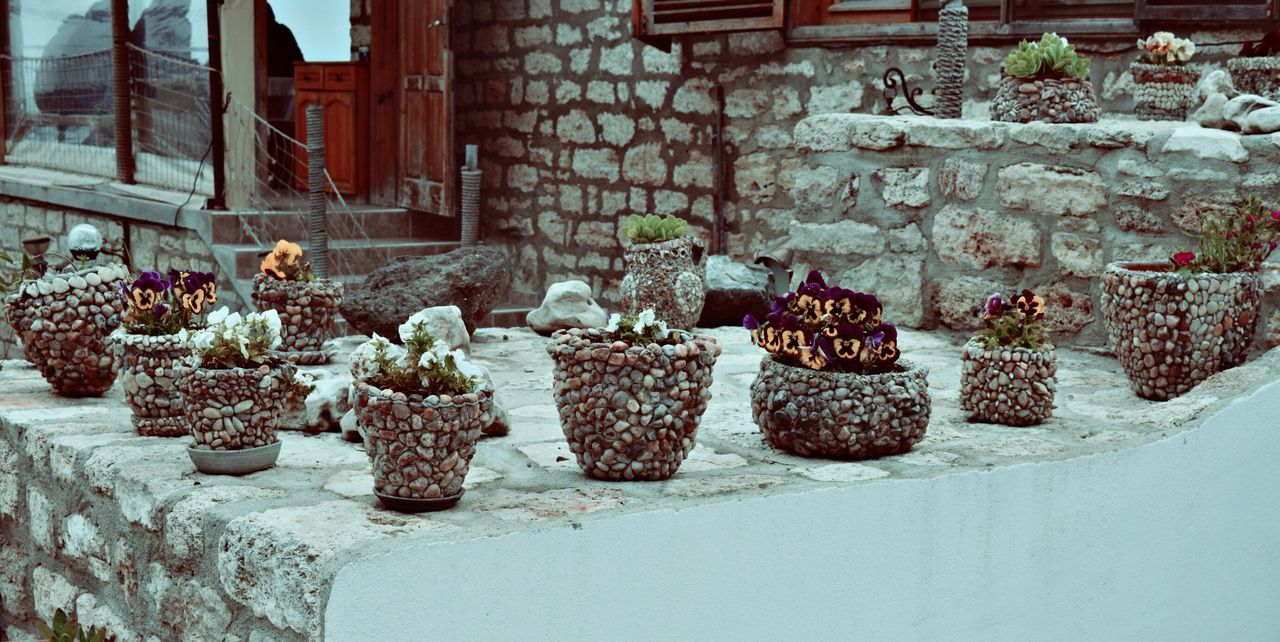 Potted Plants Growing On Stone Wall Against Building