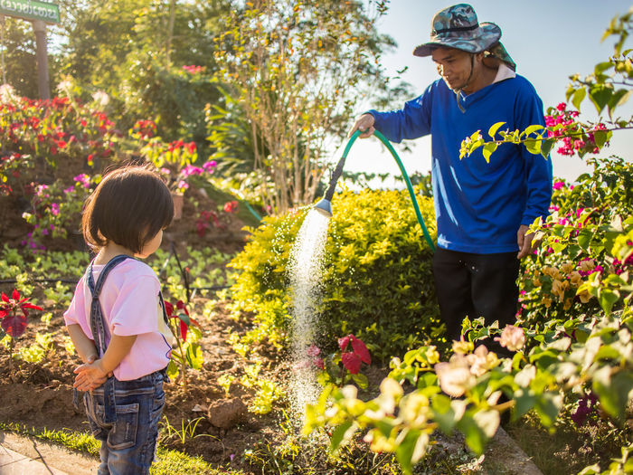 Girl Standing In Front Of Man Watering Plant In Park