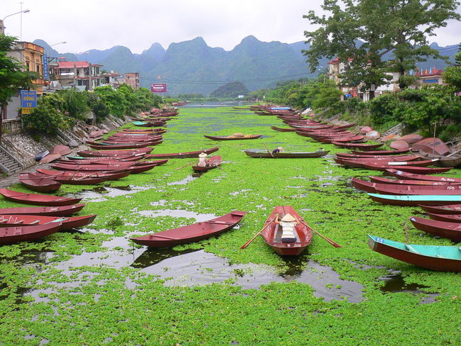 Architecture Beauty In Nature Boats Cultures Day Green Color Green River Growth High Angle View Kajak Mountain Nature No People Outdoors River Riverside Silence Sky Travel Destinations Tree Vietnam Water