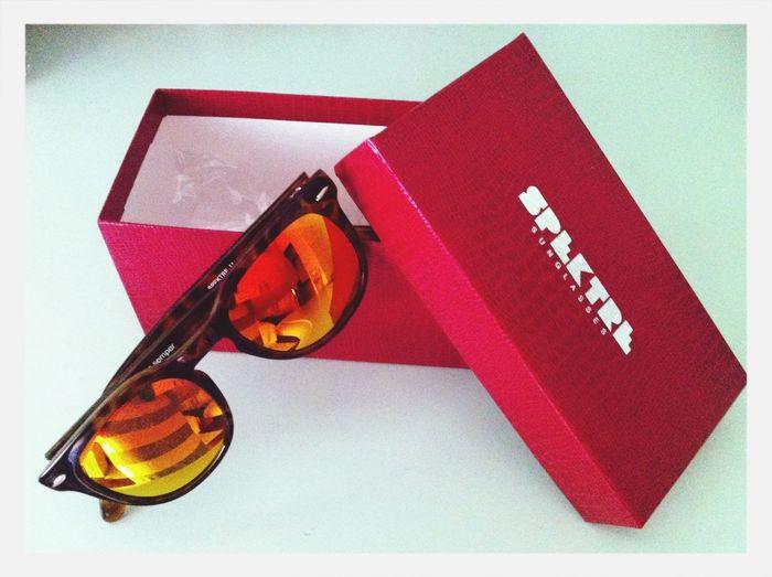 SpektreSunglasses Sunglasses Spektre Inlovewhitthem
