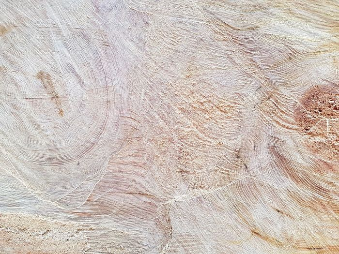 Wood texture Wood Backgrounds Full Frame Textured  Pattern Abstract Dirty Close-up Rough Scratched