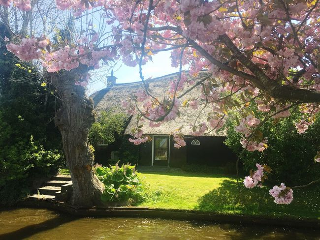 Giethoorn In Holland  Giethoorn Natural Beauty Travel Peaceful Myownjourney Nature