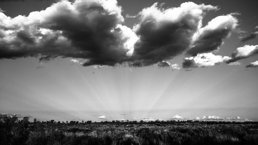 Anticrepuscular rays in the Australian Desert - The sunbeams from behind appeared to be focused. I've never seen this phenomenon before and was fascinated by it. This picture was taken in the Australian Desert and the sun was behind myself around an hour before sunset. Blackandwhite Bw Landscape Landscapes With WhiteWall The Great Outdoors With Adobe The Great Outdoors - 2016 EyeEm Awards Cloudporn, Skyporn, My View And Motivation Minimalism Desert Dramatic Sky God Rays Light Travel Light And Shadow Meteorology Sun_collection, Sky_collection, Cloudporn, Skyporn Motivation Phenomena Collection Phenomenon Sky Atmosphere Sun Rays Sunbeam Sunbeams thanks to Shannon Ramos and Nakeva Corothers for finding out the explanation!