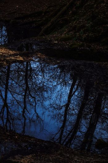 Nature Reflection Bubovickevodopady Beauty In Nature Scenics Forest Czech Republic Dark No People Little Trip Outdoors Water Day