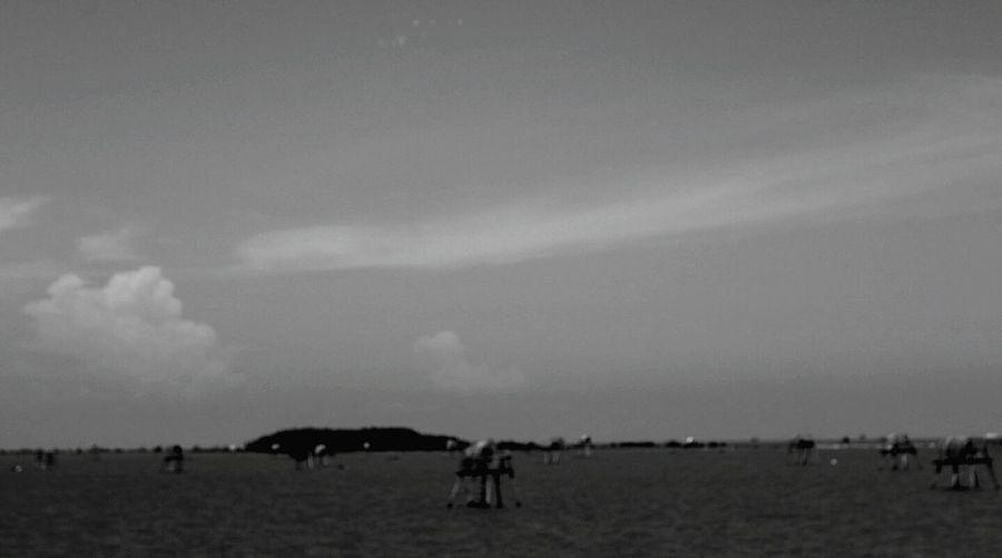 妳從未輸過,但遇到我卻是妳一生最大的輸 Sky Sea And Sky B&w Vietnam Trip