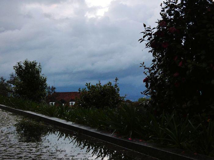 Railroad tracks amidst trees against sky during rainy season