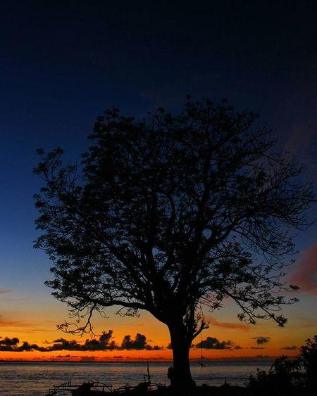 Tidakkah kamu perhatikan bagaimana Allah telah membuat perumpamaan kalimat yang baik seperti pohon yang baik, akarnya teguh dan cabangnya (menjulang) ke langit, pohon itu memberikan buahnya pada setiap musim dengan seizin Tuhannya. ➖➖➖➖➖➖➖➖➖➖➖➖➖➖➖➖➖➖➖➖➖➖ 📍 Desa Gangga Likupang Minahasautara Sulawesiutara INDONESIA 📷 Canon Eos600d Canonphotography Canon_official Instanusantaramanado Instagram Instanusantara Instapantai Kompasnusantara IManado Visitmanado