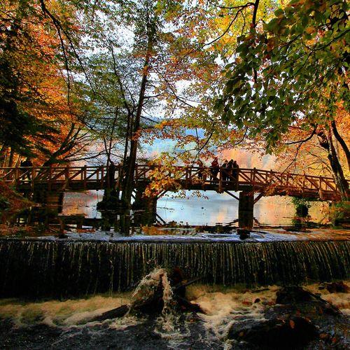 Landscape Amazing Lake Wonderful Yedigoller Woter Turkey Turkeystagram Photographer