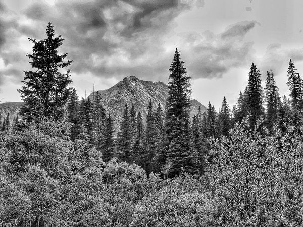 Angry Sky Stormy Weather Storm Clouds Mountains Trees Forest B&w Photography Black And White Photography Canonphotography Black And White Unsettled Dramatic Sky Colorado Silverton, Colorado San Juan Mountains