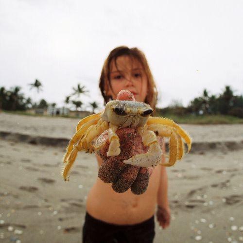 Pentacon Six Kodakektar100 120 Film Children's Portraits Crabs Florida Onthebeachweforgettocountthedays Flotsam Flektogon Filmsnotdead