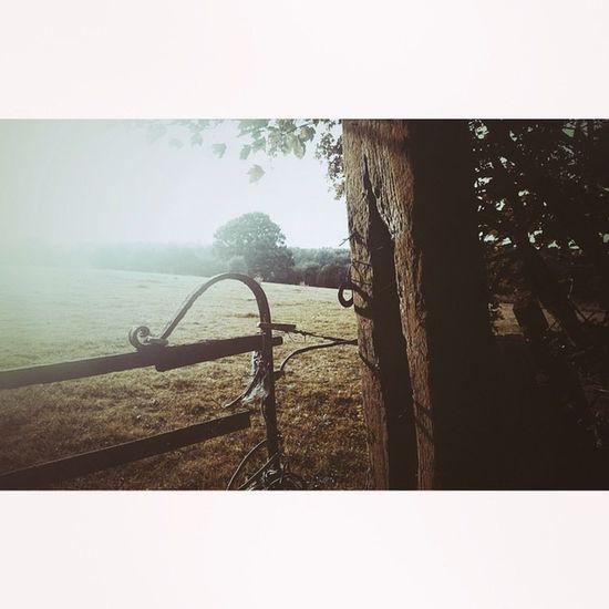 Old Gate Woodenpost Ignature ig_rusticcountrysideigersbritainigersderbyshireig_britishislesloves_united_kingdomcapturingbritainnexus_rusticrsa_natureiphoneonly