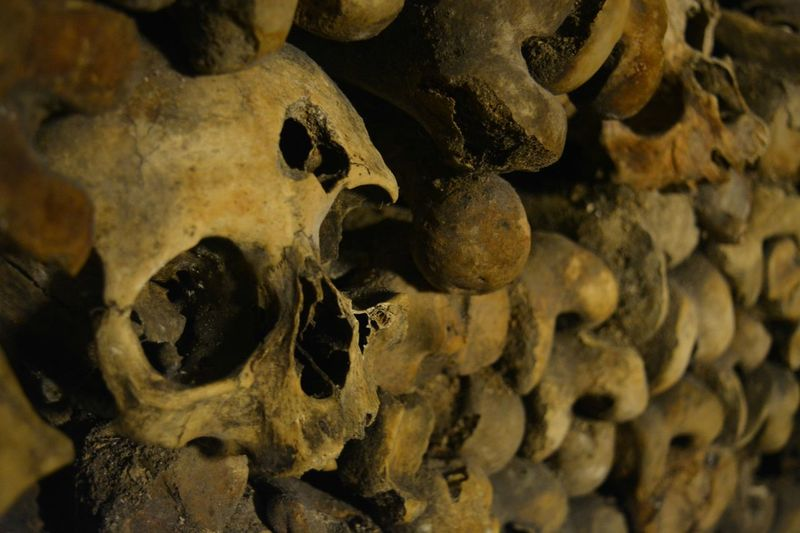 Rows of Skeletons.. the Catacombs of Paris. Backgrounds Bones Catacombs Close-up Dead Death Gun Martyrdom Martyrs No People Paris Shot Shp Skull Skulls Tombs