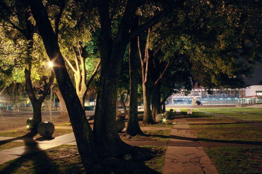 Caminando Por Ahi Night Caminandoporlavida Mexico_maravilloso Mexico Una Mirada Al Mundo Fotografianoturna En Algun Lugar Del Universo Maya_dcv Ciudad Universitaria Canonphotography CDMX😍