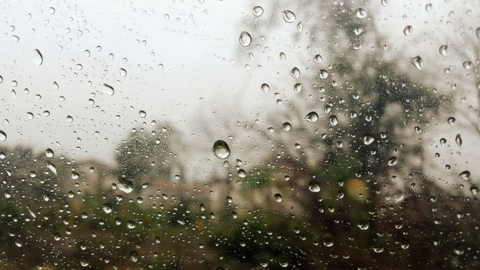 Glass Water Window Rain Rainy Days Drop Drop Of Water Drop Of Rain Nature EyeEm Eyeemnaturelover Eyeemnature Naturelovers EyeEm Best Shots Trees Inside Car Trip Road Igers Out Of The Box Samsung Galaxy S6 Edge PhonePhotography Phonecamera Art