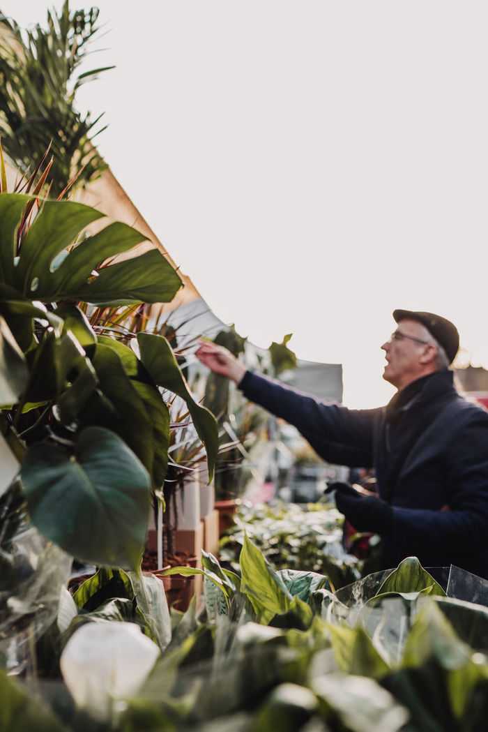 MAN HOLDING PLANT AGAINST CLEAR SKY