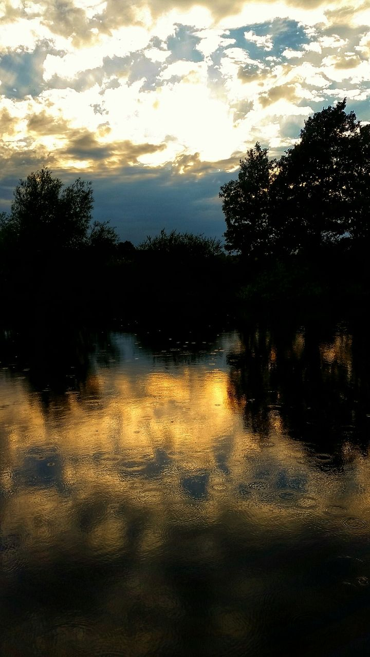tree, reflection, nature, tranquility, water, outdoors, no people, scenics, tranquil scene, lake, beauty in nature, sky, sunset, forest, landscape, cloud - sky, silhouette, growth, day