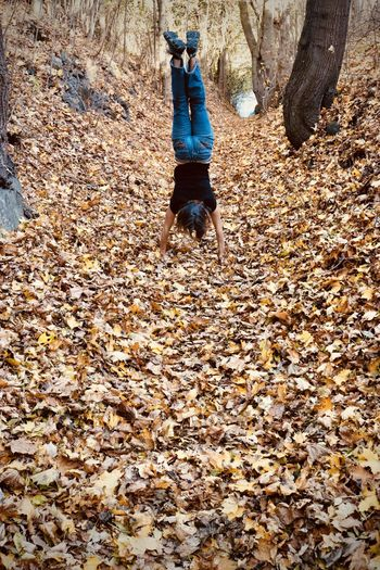 Autumn colors Autumn Leaves On Ground EyeEmNewHere Handstand  Fall Leaves Fall Season Girl Doing Handstand Upside Down