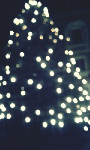 Baum Weihnachten ..