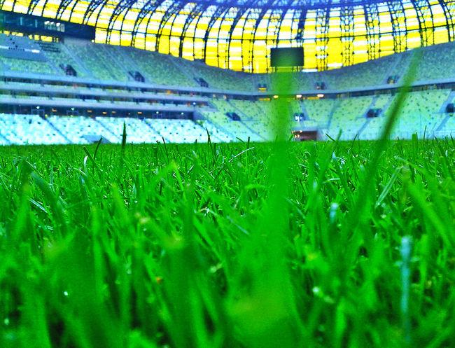 Boisko Close-up Field Football Grass Green Color Pgearena Soccer Soccer Arena Soccer Field Soccer⚽ Sport Stadion Stadium EyeEmNewHere
