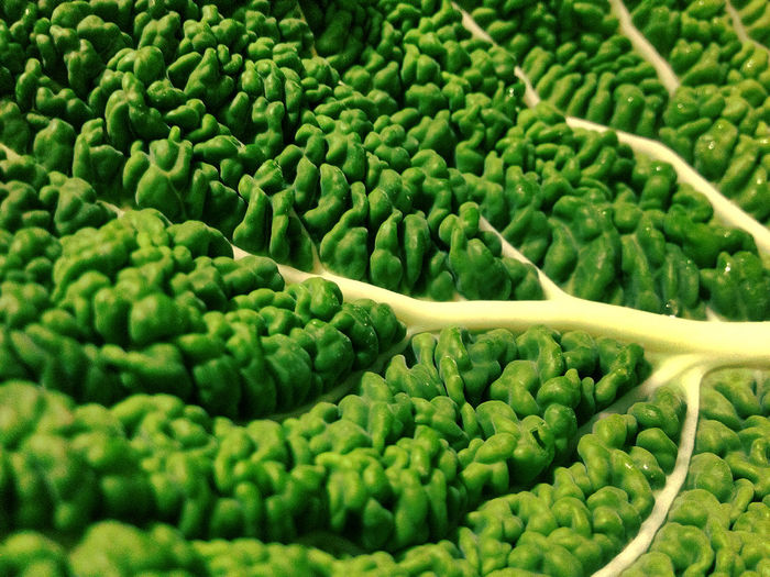 Savoy cabbage leaf Vegetables Savoy Cabbage Leaf Vegetable Food Edible  Healthy Five A Day Green Greens Diet Close Up