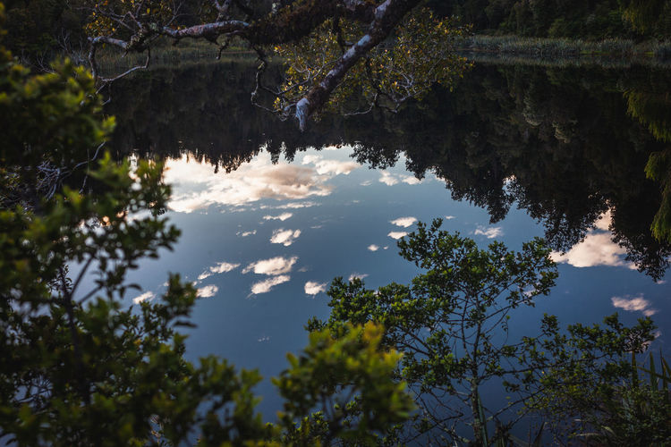 Reflections In