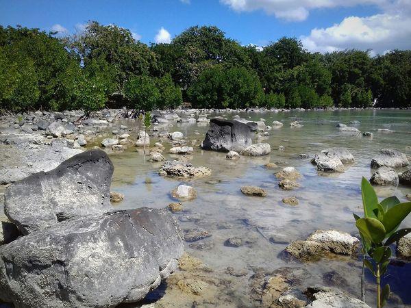 Taking Photos Viewmatic Beach Photography mauritius