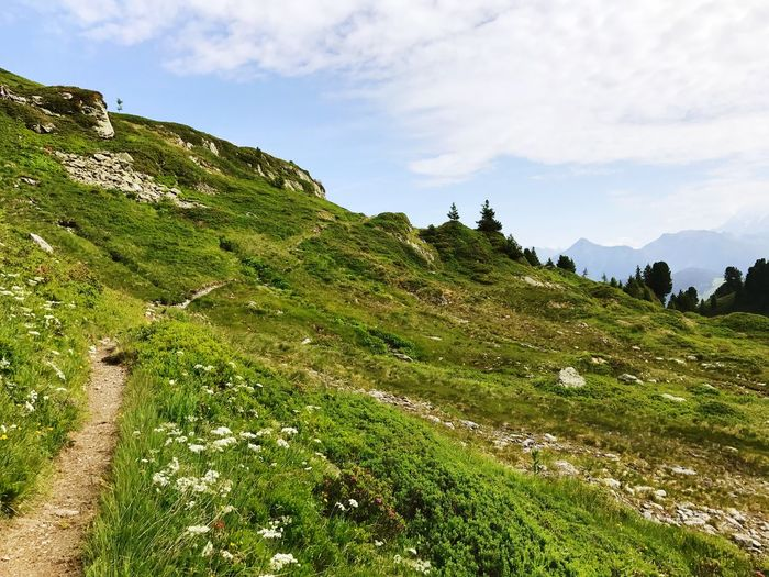 The Way Forward Path Hiking Trail Green Color Nature Beauty In Nature Growth Sky Tranquility Cloud - Sky Outdoors Scenics Field Landscape Tranquil Scene Day Hill Grass No People