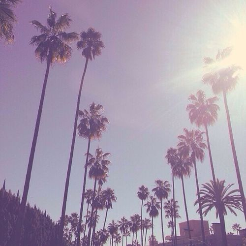 Can I go back, peweezz? ? Springbreak2014 California Takemeback