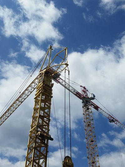Crane Crane -