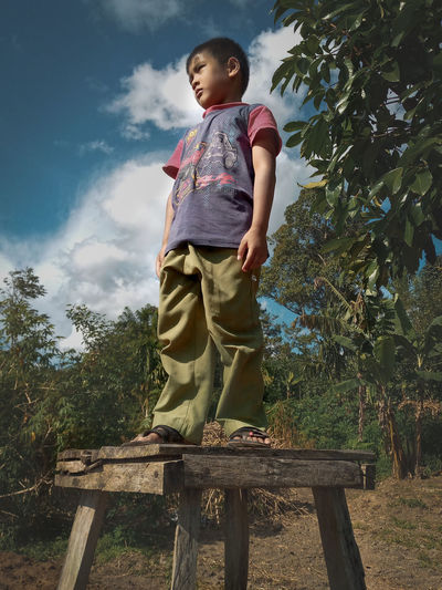 Low angle view of boy standing by tree against sky