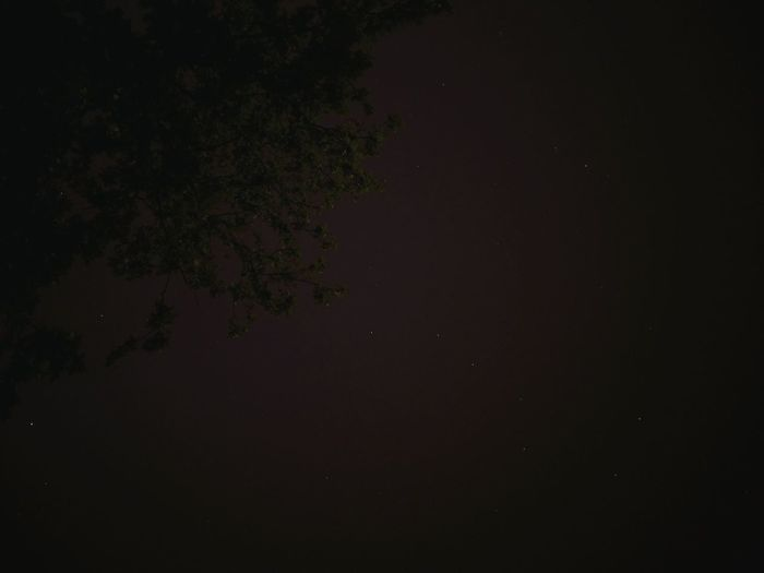 Sky Night Constellation Stars Ursa Major небо Mobilephotography Taking Photos OpenEdit Astrophotography