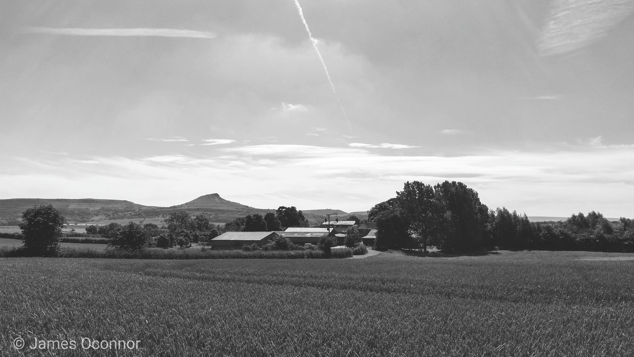 landscape, sky, rural scene, field, land, environment, cloud - sky, plant, agriculture, scenics - nature, nature, farm, architecture, tree, tranquil scene, growth, beauty in nature, tranquility, built structure, no people