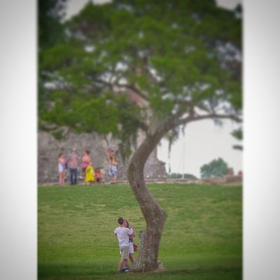 """The Moment after Theproposal by """"the tree"""" in front of traffic at the Castillodesanmarcos Couples Love Trafficshot Staugustine Florida Ig_great_shots_fla"""