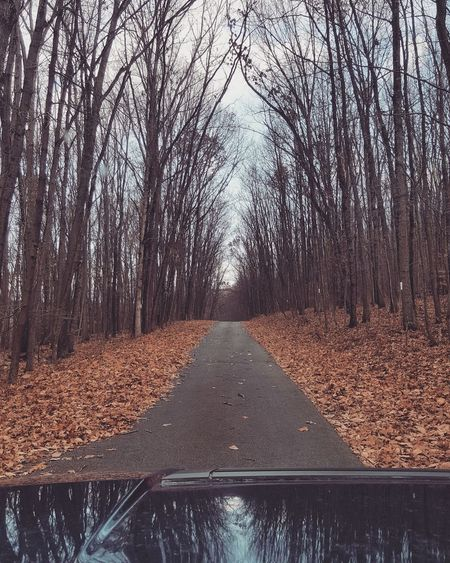 Autumn Road. Tree Nature No People The Way Forward Day Sky Outdoors Beauty In Nature Road Adventure Mountainvibes Overcast Fall Autumn
