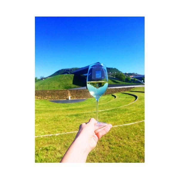 Hungary Somló-hegy Kreinbacher My Job Wine Moments Champagne Lover