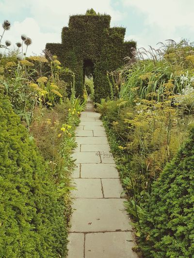 Portal Green Portal Garden Pathway Archway