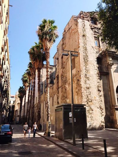 Architecture Building Exterior Clear Sky Outdoors Travel Destinations City People Tranquility Historical Building Sunny Trees City City Life Free Camino Built Structure Real People
