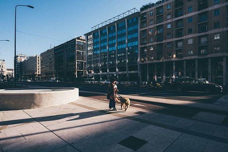 Milano Milano Igersmilano Street Streetphotography Travelmore Thisisitaly Exploring_the_earth Lightlovers Visualauthority Shotaward Passionpassport Editoftheday Photooftheday Everydayeverywhere ExploreEverything Everydayinpics Minimal Minimalism Architecture