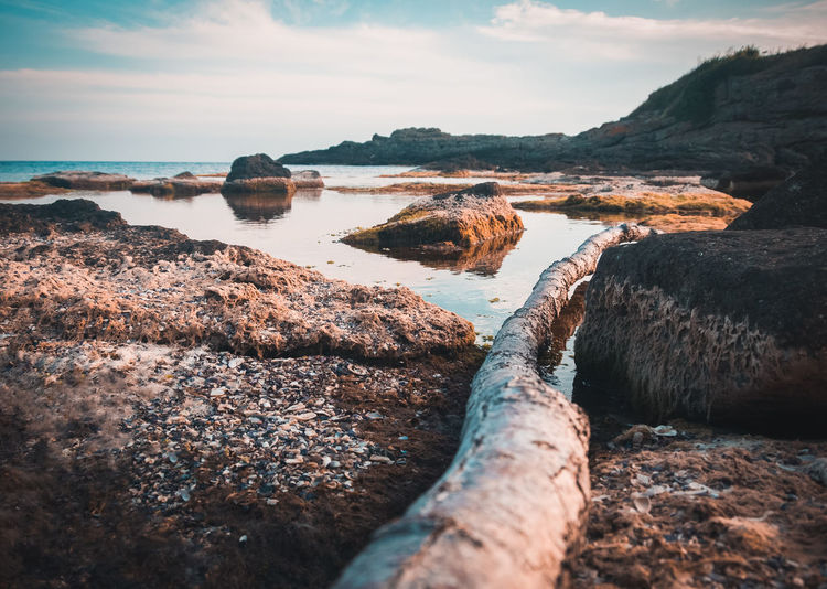 Driftwood and rocks by sea against sky