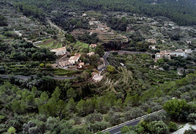 Aerial drone view of small hillside Banyalbufar town on west coast of Mallorca. Surrounded by Tramuntana mountain range district nestles among smaller peaks, where scattered farms and vineyards. Spain Palma Palma De Mallorca Majorca Majorca, Spain Mallorca SPAIN Tourist Resort Balearic Islands Aerial View Aerial Aerial Photography Aerial Landscape Drone  Drone Photography Panorama Panoramic Farmland Forest Above Landscape Agricultural Field Banyalbufar Cliff Countryside Tramuntana