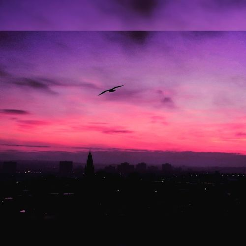 City sunrise☀💜 Adapted To The City Dramatic Sky Sunrise Silhouette Urban Views Purple Clouds Pink Clouds Steeple Morning Flight No People Artistic Photography Nature And Architecture In Harmony Cloudporn Urbanscape Winter 2017 Bristol Uk EyeEm New Here Millennial Pink Breathing Space Investing In Quality Of Life EyeEmNewHere Colour Your Horizn