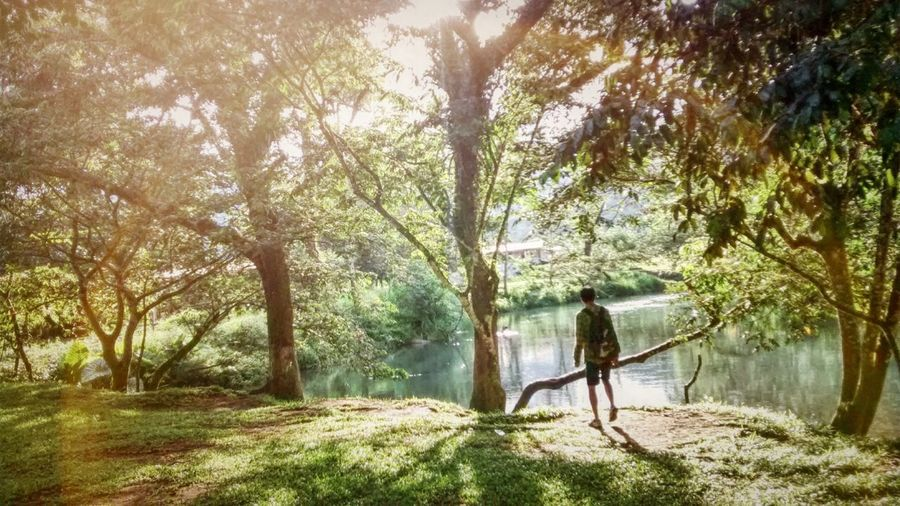 Adventure Club River Adventure Trees Showcase July