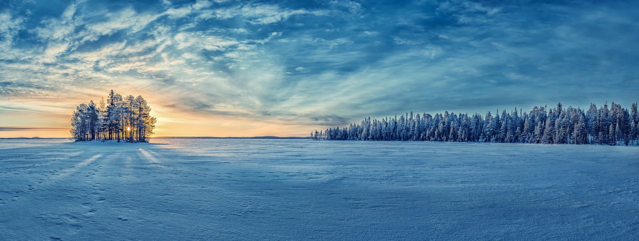 Winter Cold Temperature Snow Scenics - Nature Beauty In Nature Cloud - Sky Landscape Tranquility Frozen Tranquil Scene Outdoors Pine Tree Forest Frozen Nature Frozen Tree Panoramic Horizon